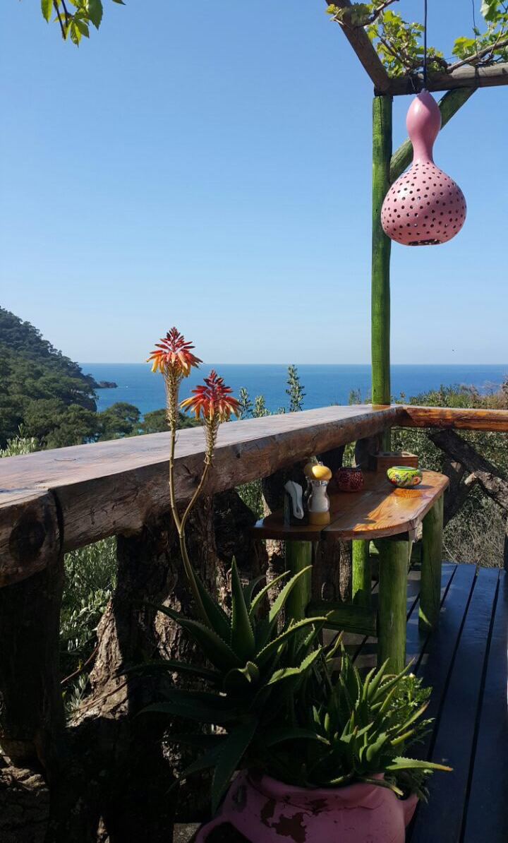 The Magic of Fresh Spring in Kabak | Turan Hill Lounge